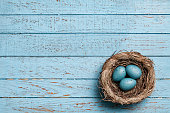 Easter eggs in nest on blue old planks  - Backgrounds Spring Season Wood