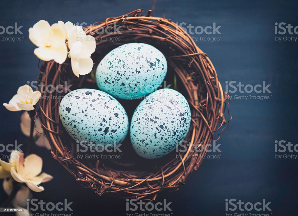Easter eggs in nest with delicate spring blossoms stock photo
