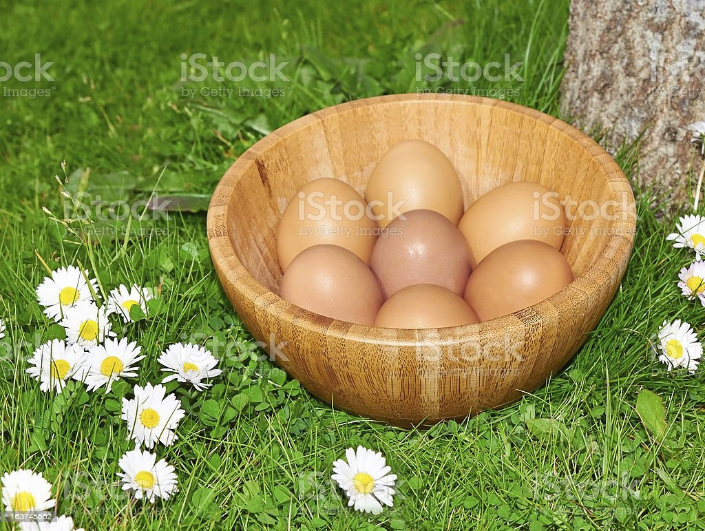 easter eggs in plate on green grass royalty-free stock photo