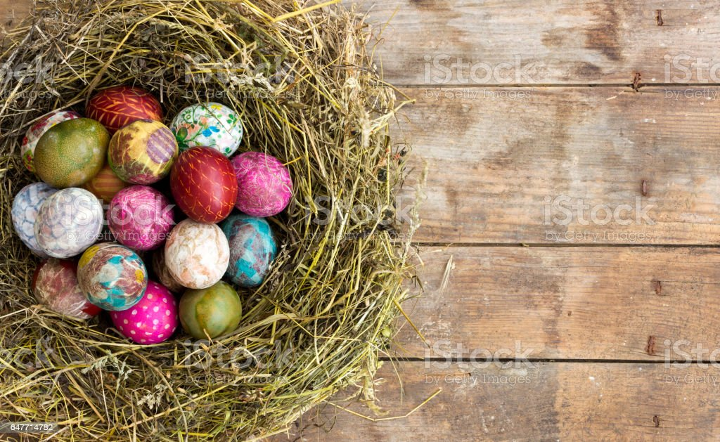 Easter eggs in the nest on rustic wooden background stock photo