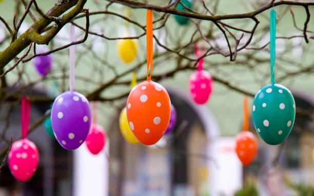 easter eggs on a branch - buona pasqua in tedesco foto e immagini stock