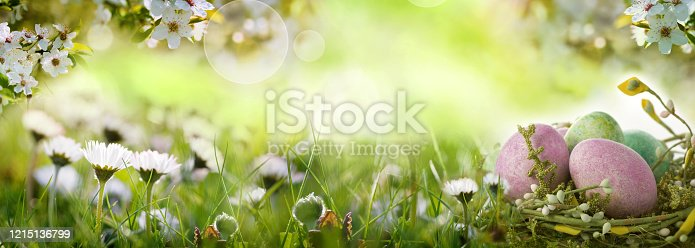 909680446 istock photo Easter eggs on spring meadow 1215136799