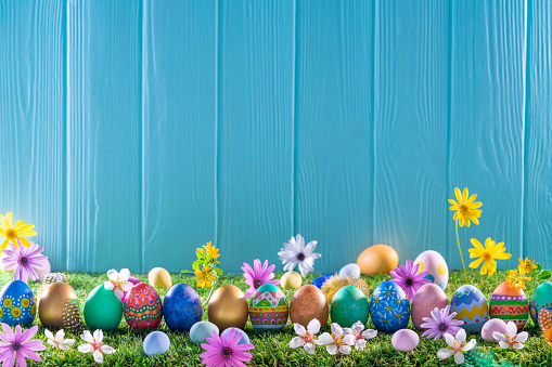 Easter eggs on turf grass and blue wooden wall with spring vivid flowers