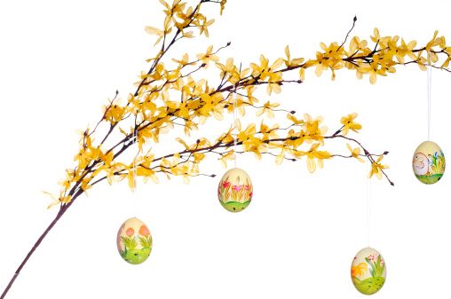 Easter eggs on twig