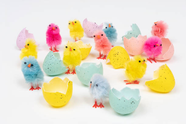 Easter eggs colored easter eggs with little chicks on a white surface sergionicr stock pictures, royalty-free photos & images