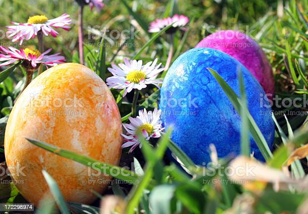 Easter Eggs Stock Photo - Download Image Now
