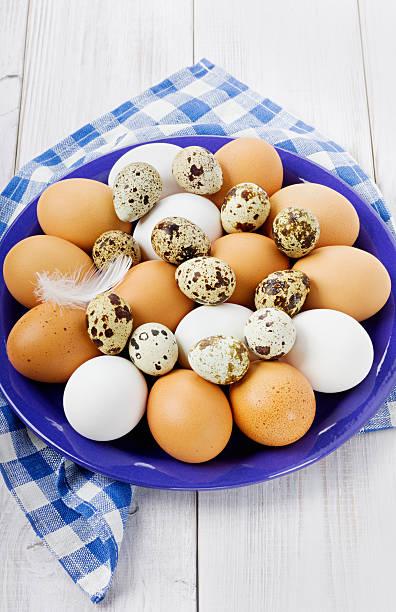 ovos da páscoa - pena de pássaro algodão imagens e fotografias de stock