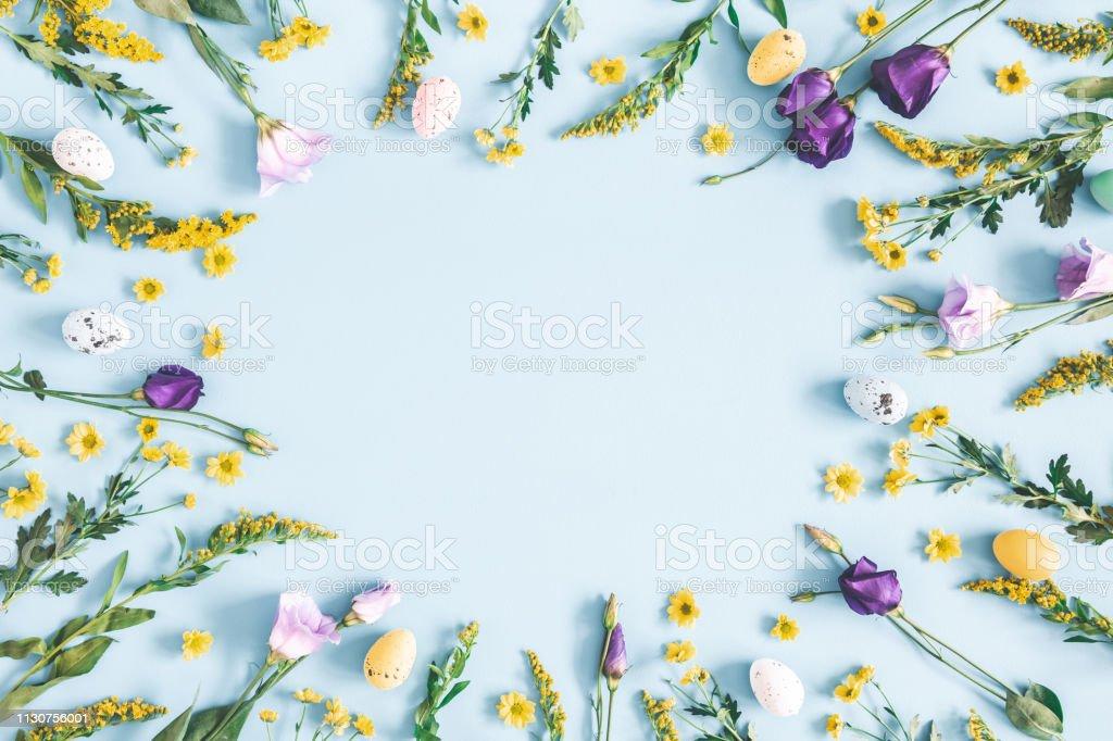 Paskalya yumurtası, pastel mavi arka planda mor ve sarı çiçekler. Ilkbahar, Paskalya konsepti. Düz Lay, üst görünüm, kopyalama alanı - Royalty-free ABD Stok görsel