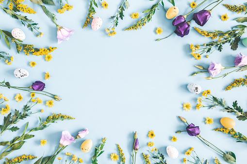 Paskalya Yumurtası Pastel Mavi Arka Planda Mor Ve Sarı Çiçekler Ilkbahar Paskalya Konsepti Düz Lay Üst Görünüm Kopyalama Alanı Stok Fotoğraflar & ABD'nin Daha Fazla Resimleri