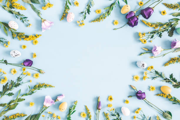 easter eggs, purple and yellow flowers on pastel blue background. spring, easter concept. flat lay, top view, copy space - easter foto e immagini stock