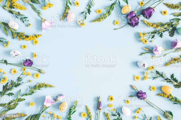 Photo of Easter eggs, purple and yellow flowers on pastel blue background. Spring, easter concept. Flat lay, top view, copy space
