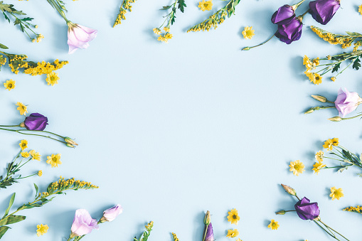 Easter eggs, purple and yellow flowers on pastel blue background. Spring, easter concept. Flat lay, top view, copy space