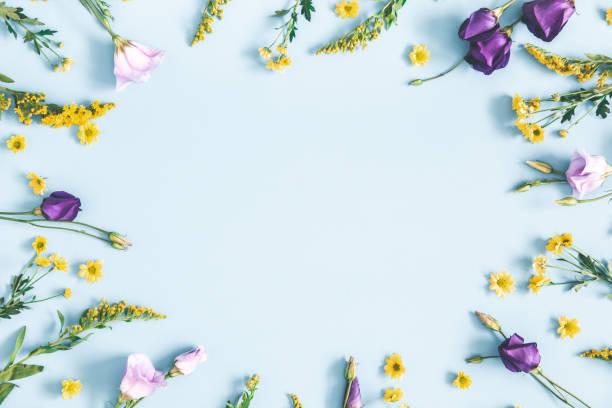 paaseieren, paarse en gele bloemen op pastel blauwe achtergrond. lente, pasen concept. platte lay, bovenaanzicht, kopieerruimte - bloem stapelvoedsel stockfoto's en -beelden
