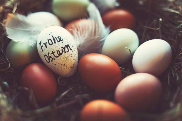 """easter eggs with german lettering """"happy easter"""" - buona pasqua in tedesco foto e immagini stock"""
