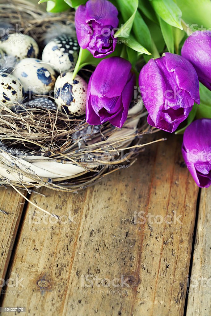 easter eggs with purple tulip flowers royalty-free stock photo
