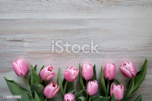 Easter Frame of  Pink Tulips on  Wooden Background