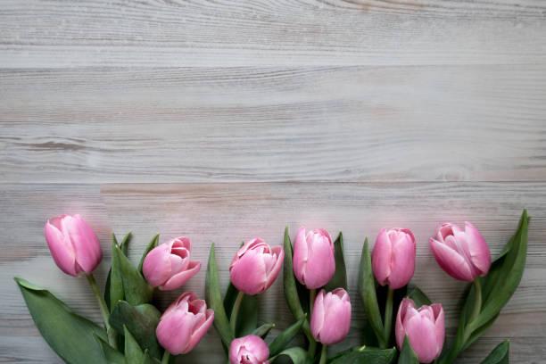 Osterrahmen von Pink Tulpen auf Holzgrund – Foto