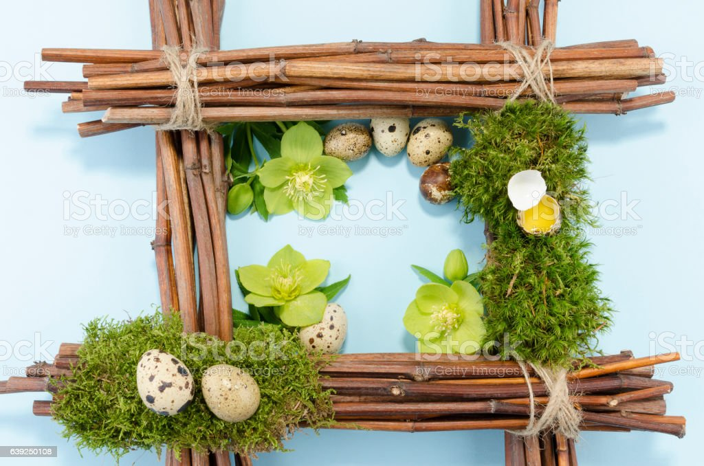 Easter frame with seven boiled  and one raw eggs stock photo