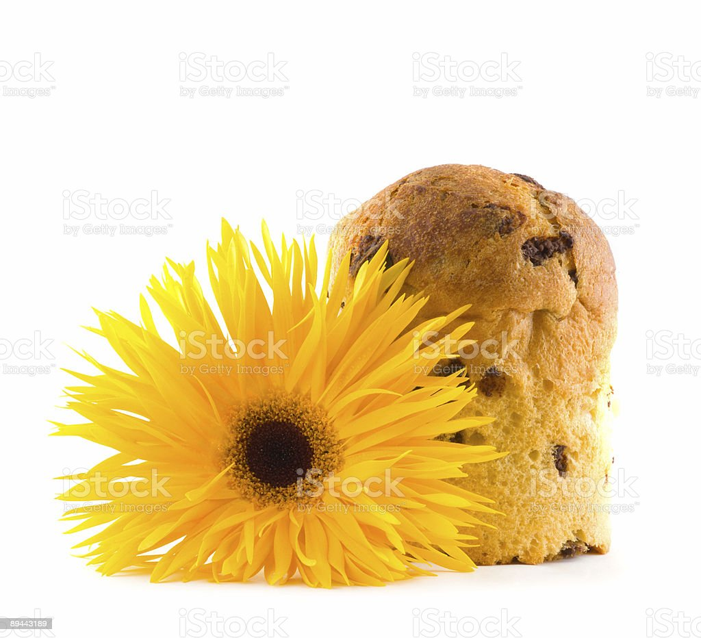 Easter fruitcake and flower. royalty-free stock photo