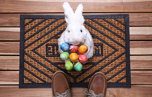 easter gift - easter bunny stock photos and pictures