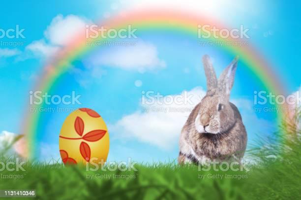 Easter greeting card with a cute easter rabbit in the grass picture id1131410346?b=1&k=6&m=1131410346&s=612x612&h=tx7syqduzfj7rhlnxs9zugju6dqnzfjkkhhhlvlgd34=