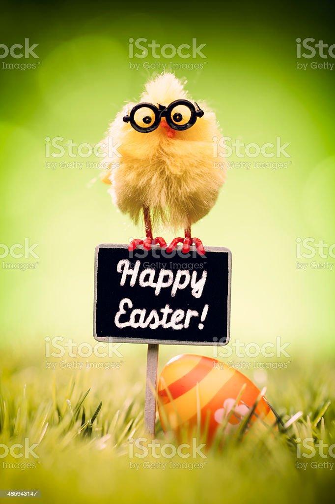 Easter Greetings - Egg Green Grass Defocused Bokeh Backgrounds stock photo