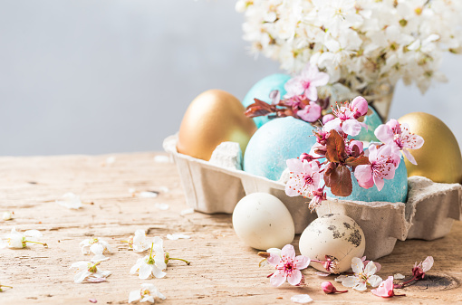 Easter colored eggs turquoise and gold on rustic wood background and spring flowers text space. Easter holiday background, card.