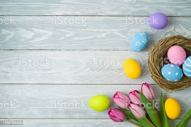Easter holiday background with easter eggs in bird nest and tulip on picture id1134704420?b=1&k=6&m=1134704420&s=612x612&h=85smgqlma99enkxkh52txg6ichamxoninv9plj24ceq=