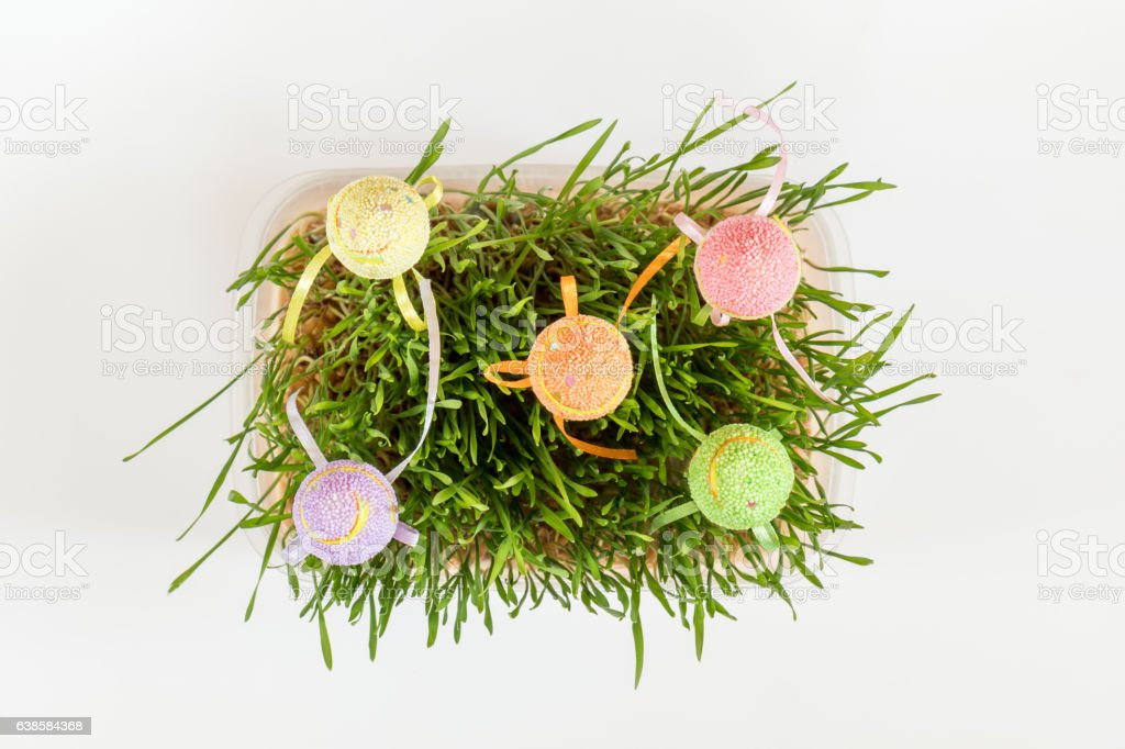 Easter holiday green attributes sets royalty-free stock photo