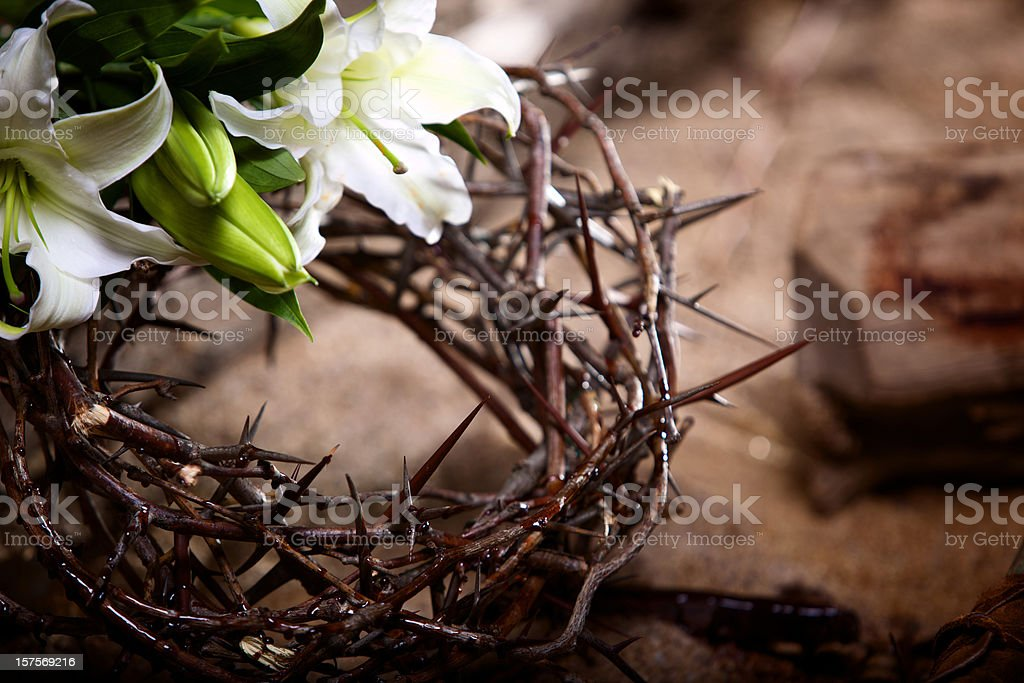 Easter Holiday passion lily stock photo