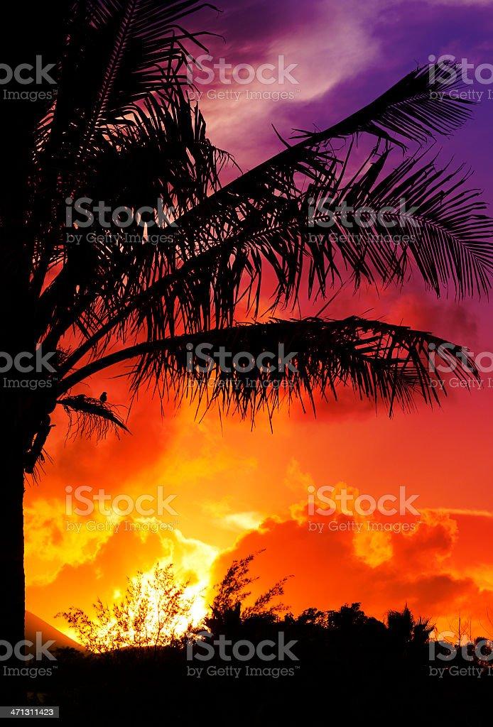 Easter Island Sunset royalty-free stock photo