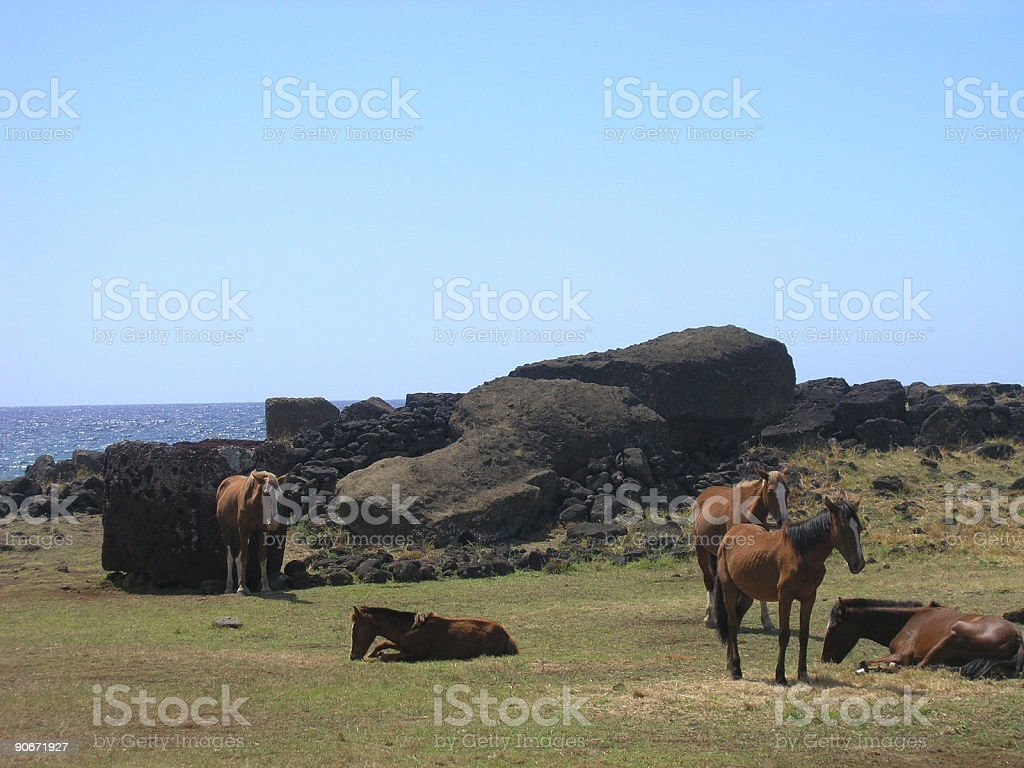Easter Island - Te Pite o Te Kura stock photo
