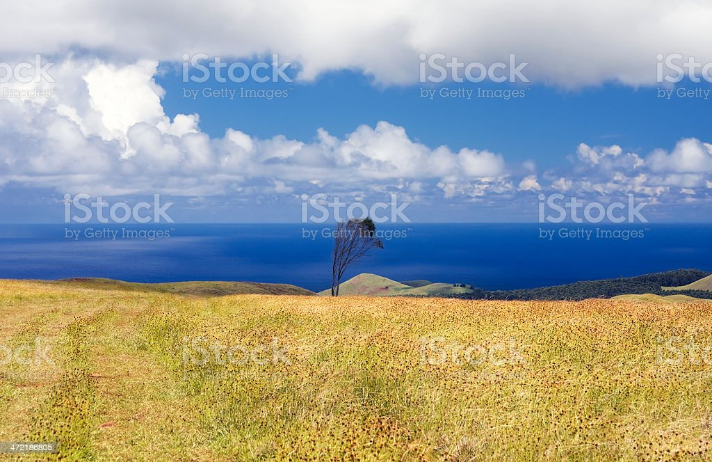Easter island. View from VolcanoTerevaka royalty-free stock photo