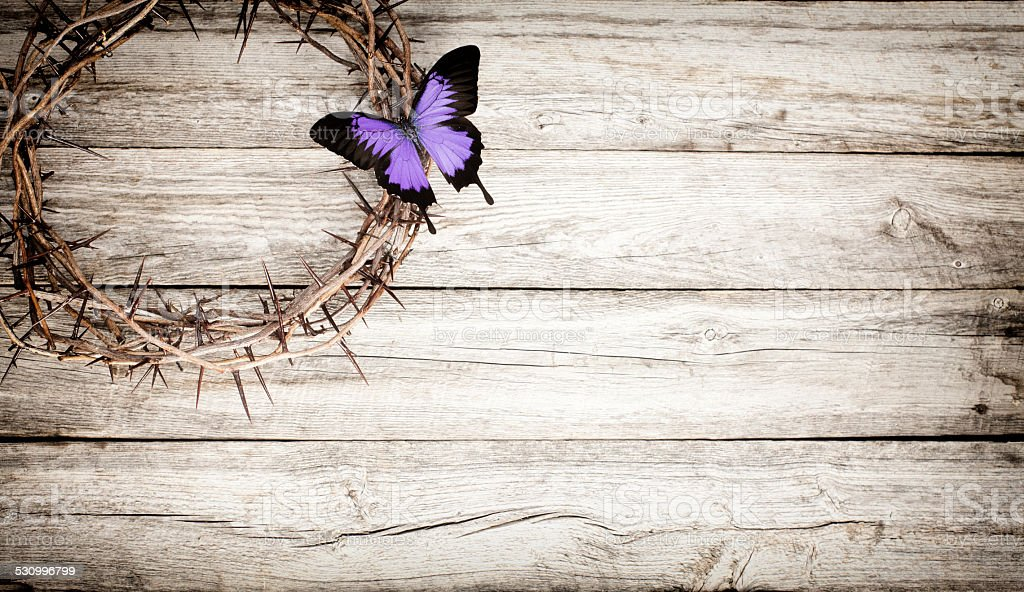 Easter Jesus crucifixion crown of thorns butterfly and old wood stock photo