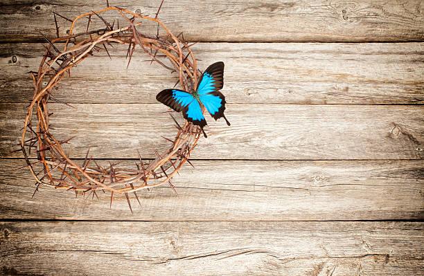 Easter jesus crucifixion crown of thorns butterfly old wood picture id508343788?b=1&k=6&m=508343788&s=612x612&w=0&h=zlf7pwoncysq8l0okpejdaxp u 2utiyejg22kqnj1y=