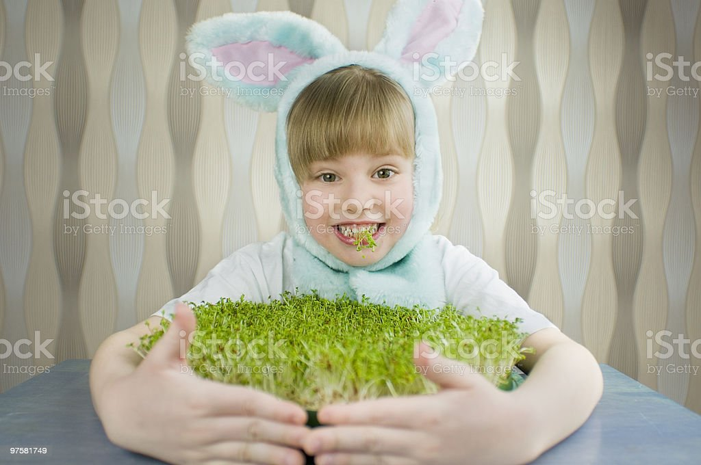 Easter little rabbit royalty-free stock photo