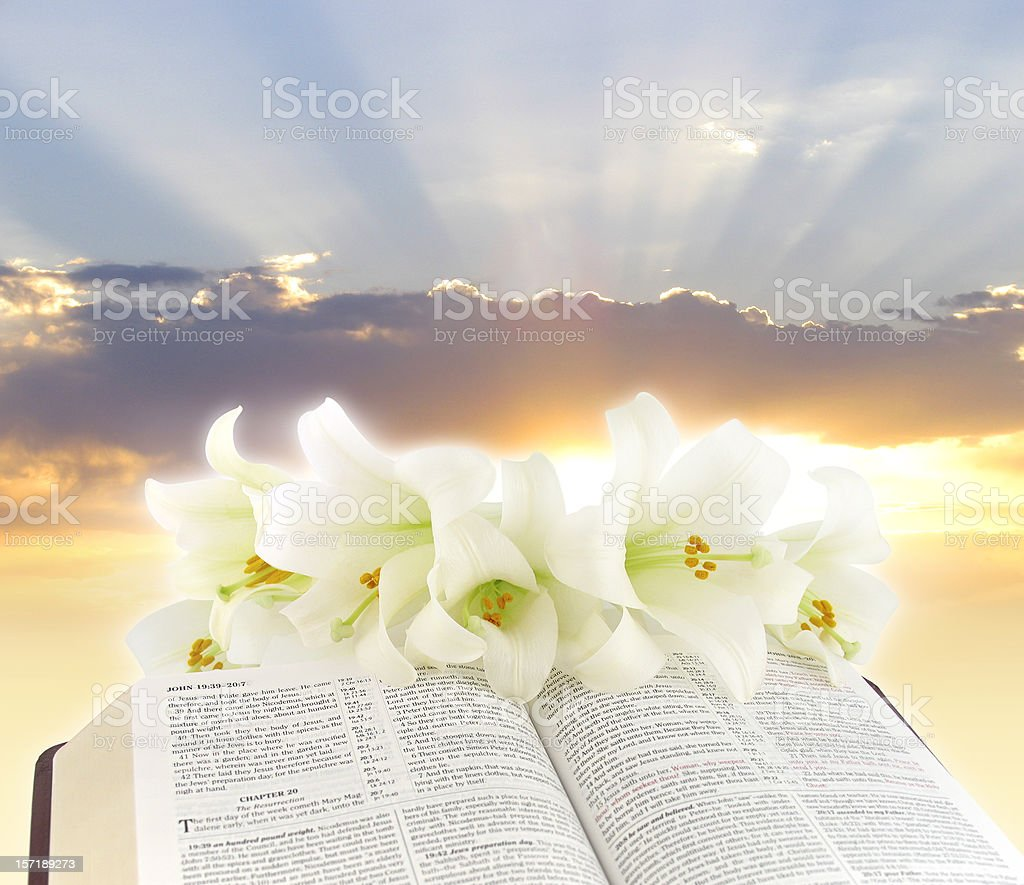 Easter Morning royalty-free stock photo