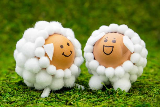 ostern oder frühjahr grußkarte mit zwei schafen geprägt eiern auf grünem hintergrund - schafkopfkarten stock-fotos und bilder