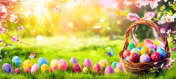 Easter - Painted Eggs In Basket On Grass In Sunny Orchard stock photo