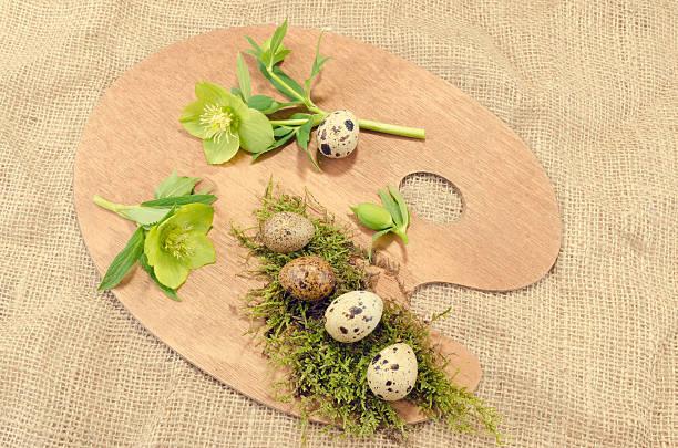 easter palette decoration with quail eggs and hellebore - bemalte muscheln stock-fotos und bilder