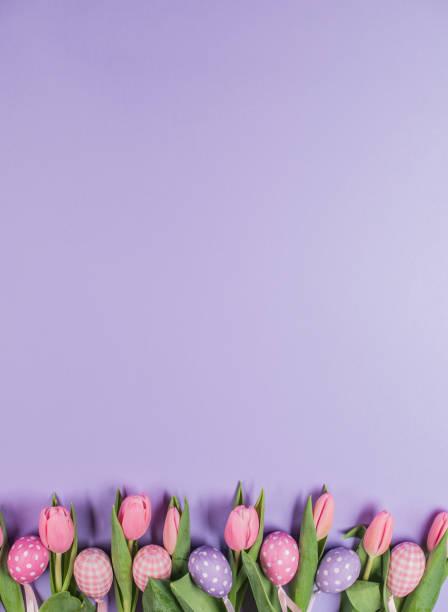 Osterpurpur-Background mit Ostereiern und Tulpenblüten in rosa Farbe – Foto
