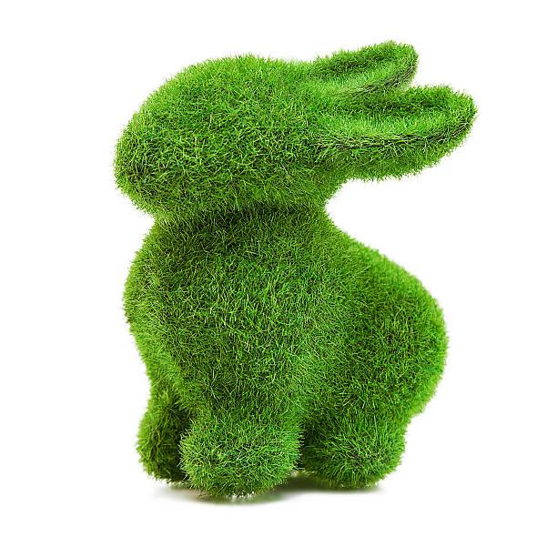 silhouette de lapin de pâques avec de l'herbe - buis photos et images de collection