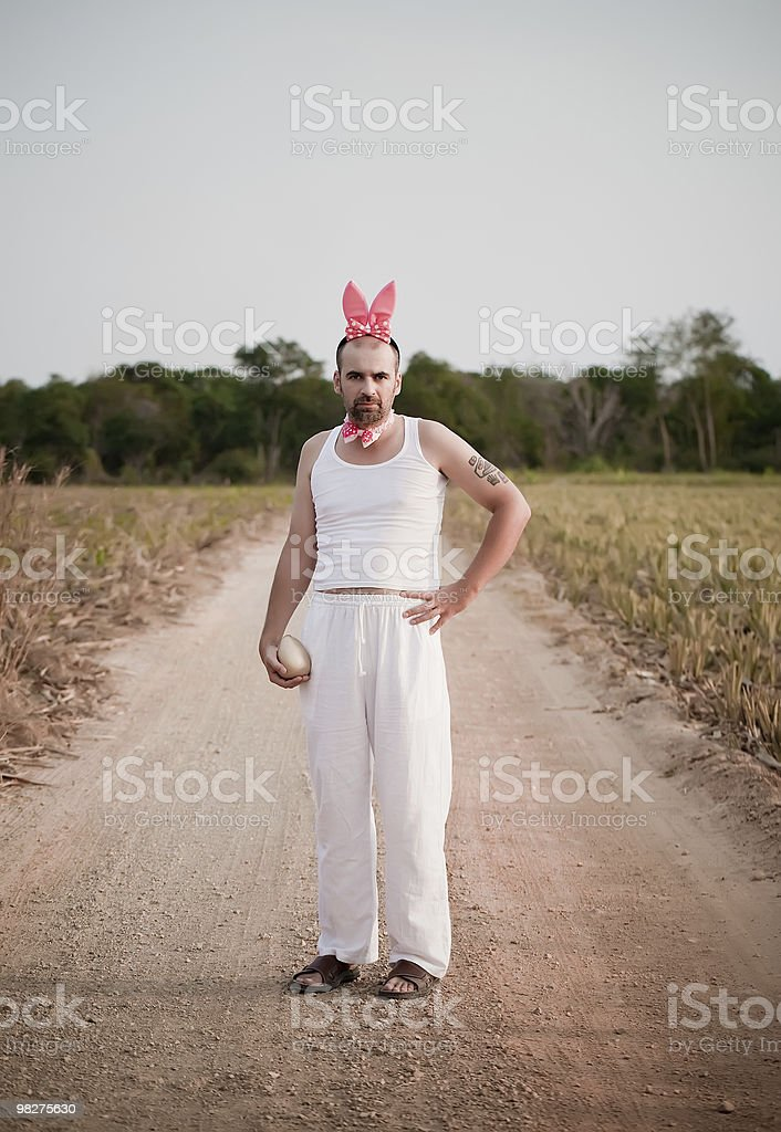 Easter Rabbit On The Road royalty-free stock photo