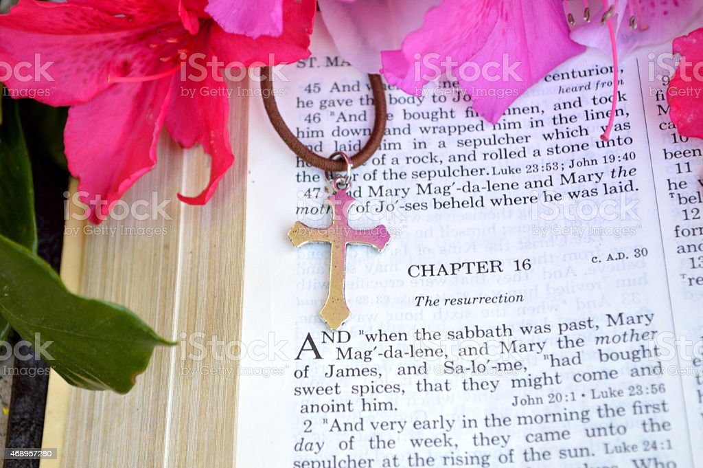 Easter scripture closeup with bright pink azaleas stock photo