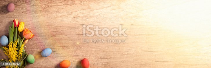 922843504 istock photo Easter spring banner 1133605748