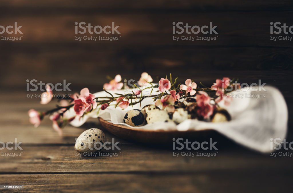 Easter still life with blossoms and quail eggs stock photo