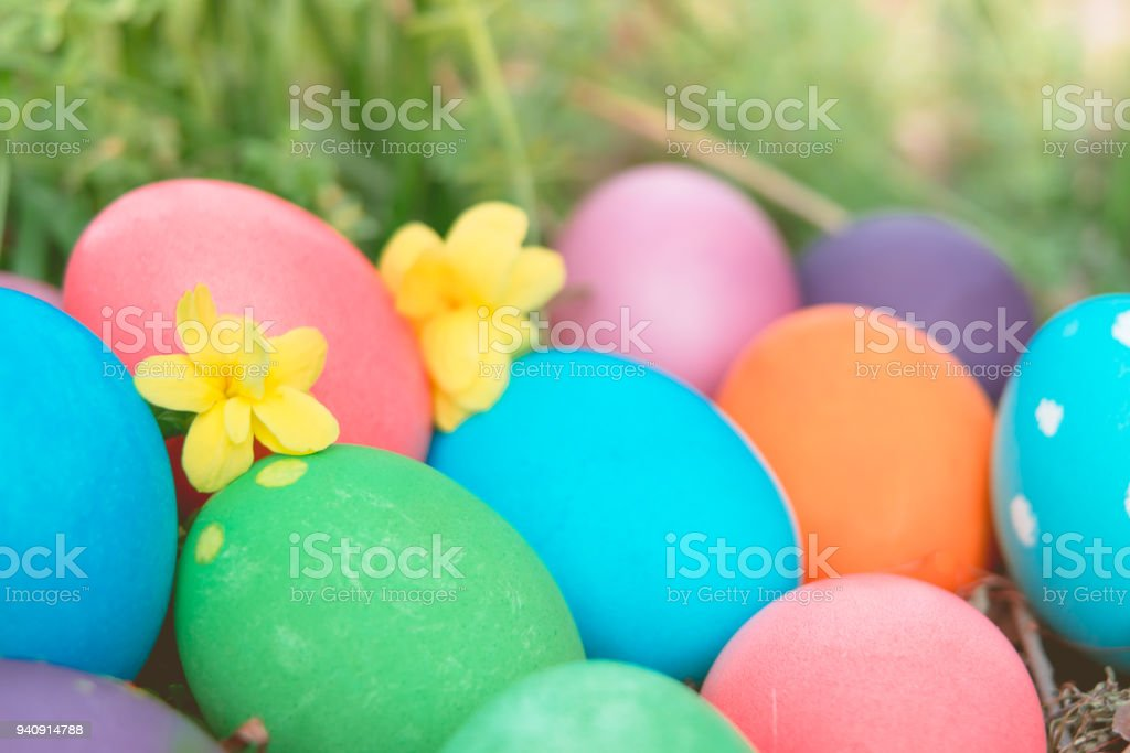 Easter sunday, happy easter, colorful easter eggs hunt holiday...