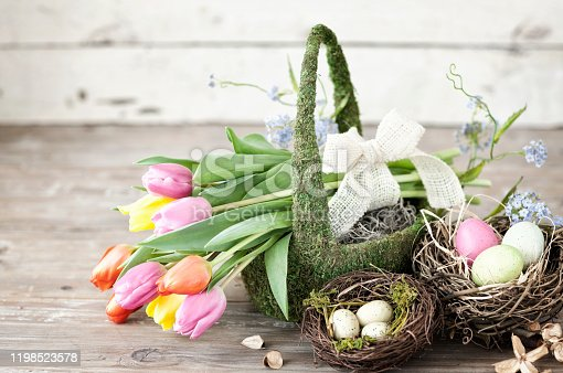 Easter Tulips in a Rustic Moss Covered Basket against an Old White Wood Background