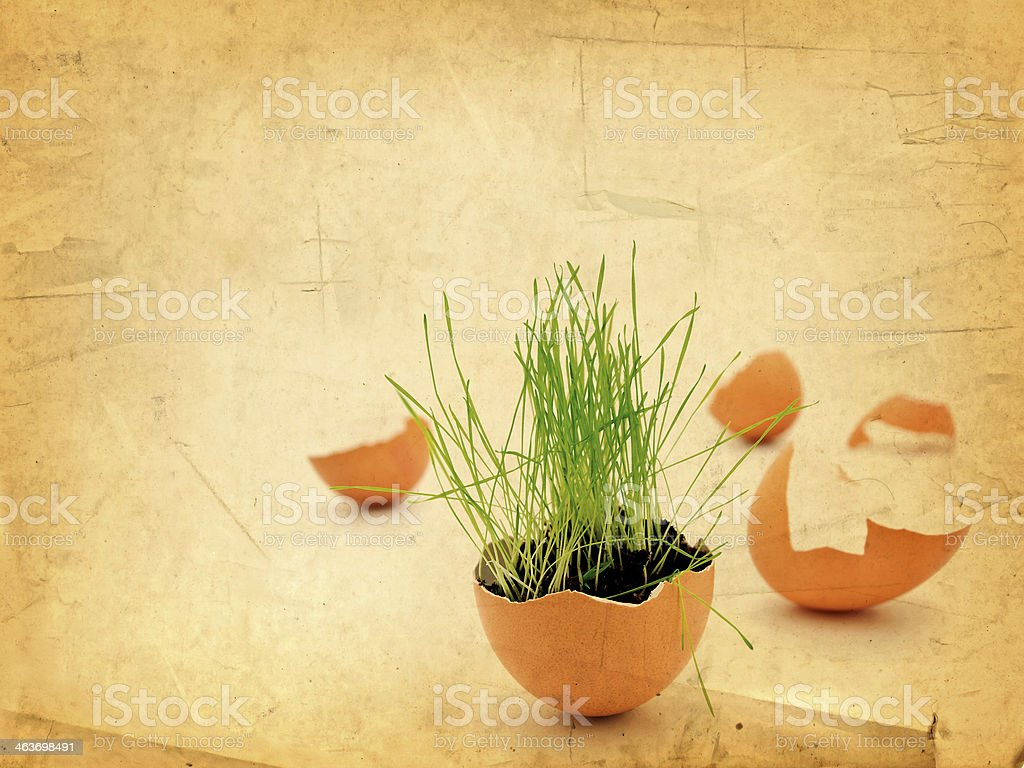 Easter Vitality royalty-free stock photo