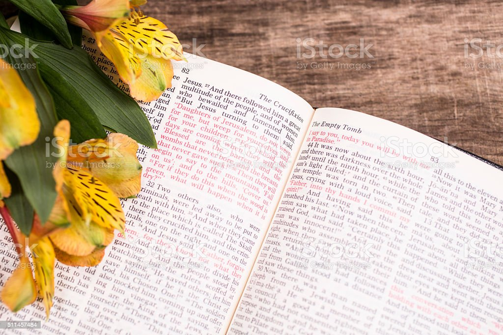 Easter yellow flowers on open christian bible st luke stock photo easter yellow flowers on open christian bible st luke royalty free mightylinksfo